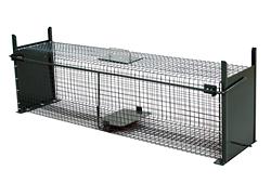 Falle für kleinere Wildtiere /5007