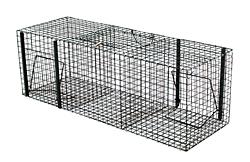Falle für Raben und Krähen /4999
